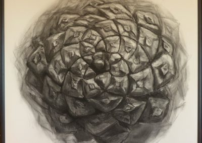 Fibonaccis Spiral. 123x123cm. Kulltegning.